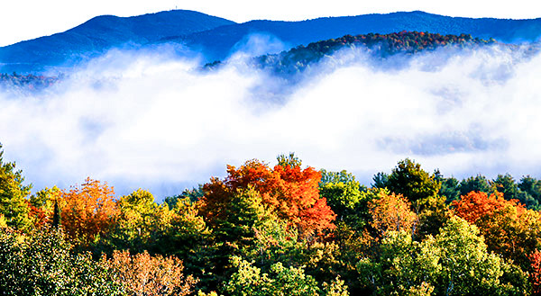 Hillside color and fog, Vermont, New England